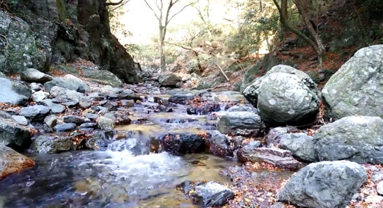 (自然音)川のせせらぎ